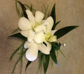 White Dendro Orchid Bout in Markham ON, Metro Florist Inc.