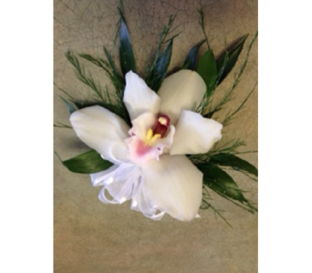 White Cymbidium Orchid Corsage/wristlet in Markham ON, Metro Florist Inc.