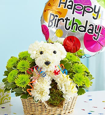 HAPPY BIRTHDAY PUPPY in Bloomington IL, Beck's Family Florist