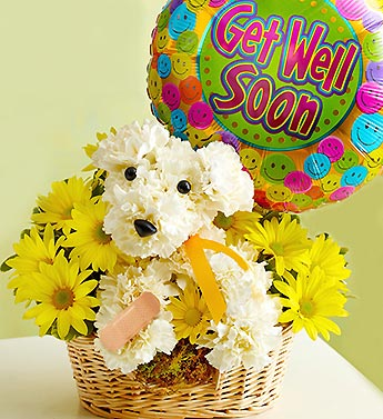 GET WELL PUPPY  in Bloomington IL, Beck's Family Florist