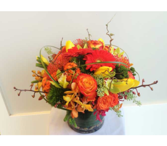 Splendid�  in Victoria BC, Fine Floral Designs
