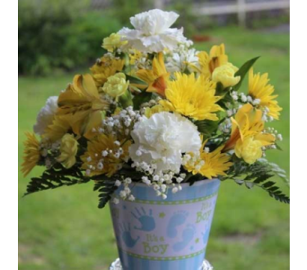 Baby Boy Arrangement in Winchester VA, Flowers By Snellings