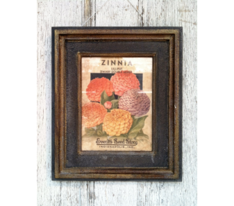 Zinnia Print in Stephens City VA, The Flower Center