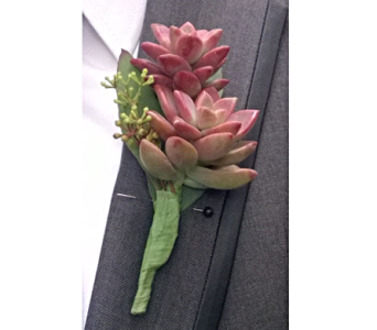 Succulent Boutonniere in Amherst NY, The Trillium's Courtyard Florist