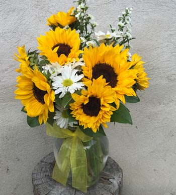 RADIANT SUNFLOWERS by Rubrums in Ossining NY, Rubrums Florist Ltd.