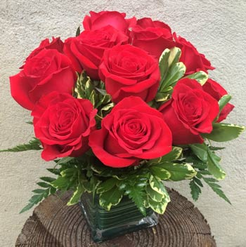 MODERN DOZEN ROSES by Rubrums in Ossining NY, Rubrums Florist Ltd.