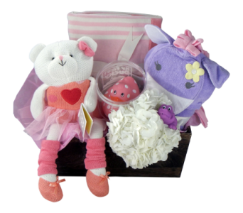 Baby Grand Gift Set, Girl in Detroit and St. Clair Shores MI, Conner Park Florist