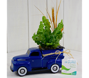 1948 Ford Truck in Indianapolis IN, Madison Avenue Flower Shop