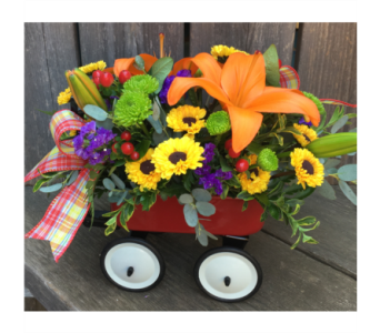 Mixed Baby Wagon in Lawrence KS, Owens Flower Shop Inc.
