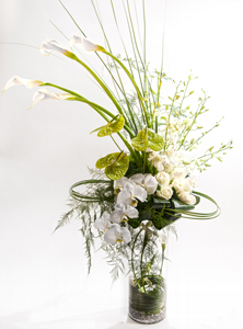 Cala Marquee in New York NY, Starbright Floral Design