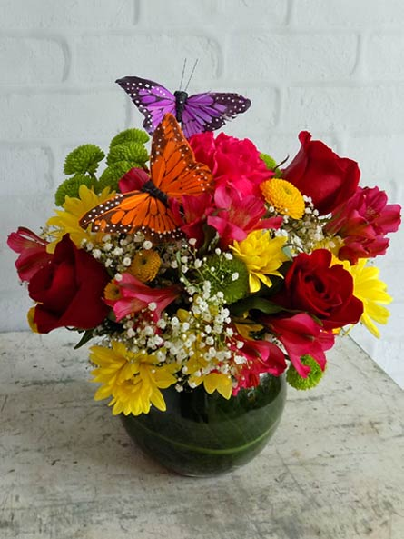 Butterfly and Blossoms in Newport News VA, Pollards Florist