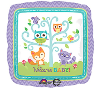 Welcome Baby-Owl in Jacksonville FL, Hagan Florists & Gifts