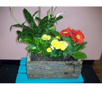 Custom in Bellefonte PA, A Flower Basket