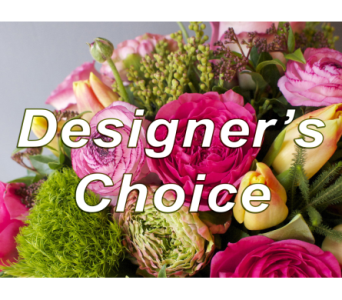 Designer's Choice in Indianapolis IN, 317 Flowers