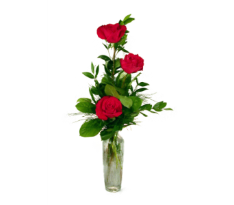 Roses Bud Vase in Indianapolis IN, 317 Flowers