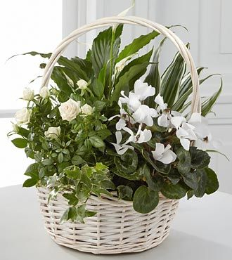 Quiet Moments Basket in Camp Hill and Harrisburg PA, Pealer's Flowers