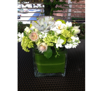 FABULOUS WHITE AND GREEN in Bellevue WA, CITY FLOWERS, INC.