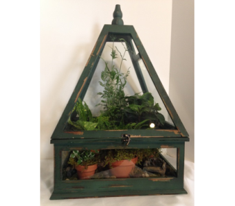GREENHOUSE TERRARIUM in Crafton PA, Sisters Floral Designs