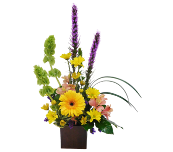 Celebrate in Mesa AZ, Watson Flower Shops