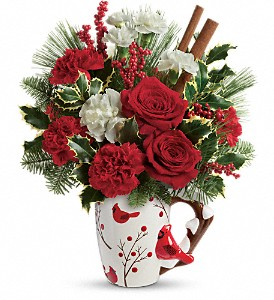 Send a Hug Wings Of  Winter by Teleflora in Woodbury NJ, C. J. Sanderson & Son Florist