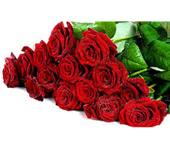 Romantic Roses in Raleigh NC, North Raleigh Florist
