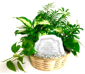 Family Chain Garden Stone Planter - 12 inch basket in Wyoming MI, Wyoming Stuyvesant Floral
