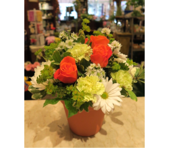 Garden of Avon in Princeton, Plainsboro, & Trenton NJ, Monday Morning Flower and Balloon Co.
