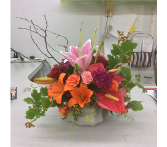Brights in ceramic in Buffalo Grove IL, Blooming Grove Flowers & Gifts