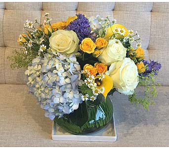 Azure Breeze in Charleston SC, Tiger Lily Florist Inc.