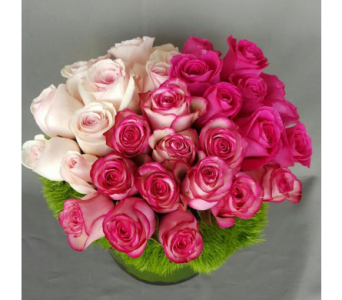 Pink Couture Roses  in Los Angeles CA, Dave's Flowers