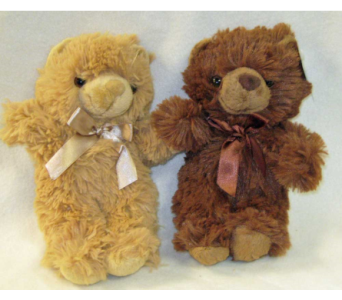 MEDIUM BROWN OR BEIGE TEDDY BEARS in Lake Charles LA, A Daisy A Day Flowers & Gifts, Inc.