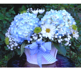 Basket of Blue in Skowhegan ME, Boynton's Greenhouses, Inc.