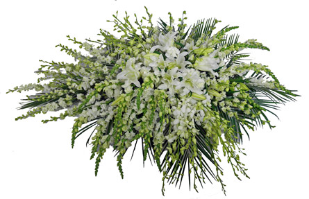 White Deluxe Casket Spray  in Fredericksburg VA, Thompson's-Westwood Florist