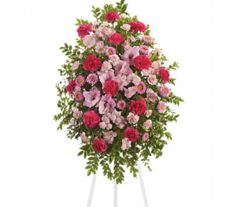 Pink Tribute Spray in Randallstown MD, Raimondi's Funeral Flowers
