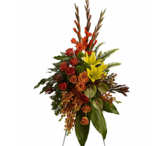 Tropical Tribute Spray in Randallstown MD, Raimondi's Funeral Flowers