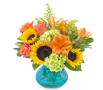 Sunshine Day in Spartanburg SC, A-Arrangement Florist
