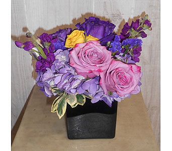 Purplelush in Dallas TX, Petals & Stems Florist
