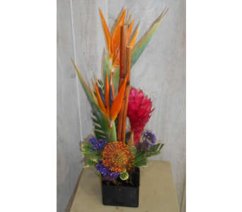 Del Mar in Dallas TX, Petals & Stems Florist