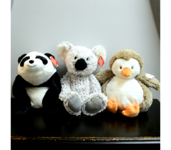 Stuffed Animals - Large in Ft. Collins CO, Palmer Flowers