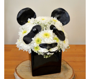 Proud Panda in Oakville ON, Margo's Flowers & Gift Shoppe