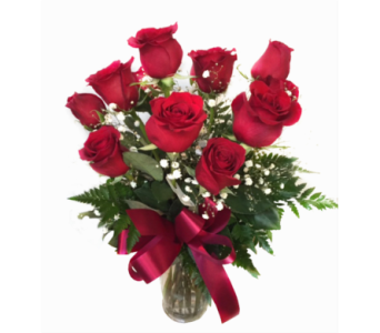 Medium Red Rose Special in Fredericton NB, Trites Flower Shop