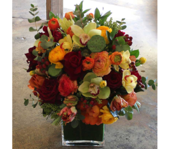 Autumn Spice in Houston TX, River Oaks Flower House, Inc.