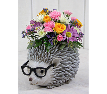 Ms. Prickly in Indianapolis IN, Steve's Flowers and Gifts