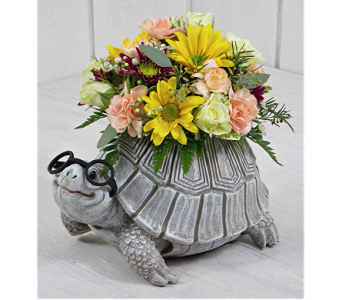 Toby The Turtle in Indianapolis IN, Steve's Flowers and Gifts