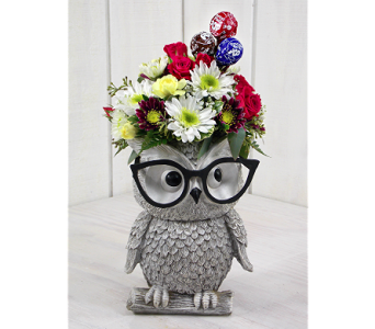 Mr. Owl in Indianapolis IN, Steve's Flowers and Gifts