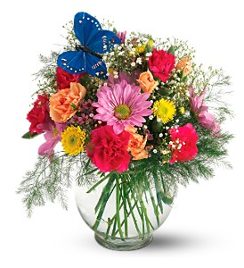 Teleflora's Butterfly & Blossoms Vase in Mooresville NC, All Occasions Florist & Gifts<br>704.799.0474