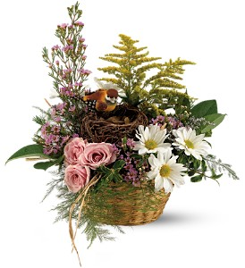 Teleflora's Nesting Basket in Gothenburg NE, Ribbons & Roses