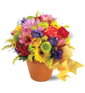 Teleflora's Fresh Blossom Potpourri in Houston TX, Village Greenery & Flowers