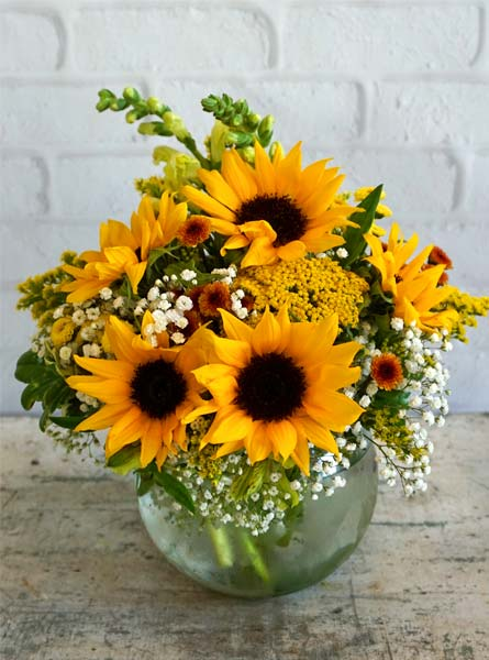 Sunflower Fields  in Raleigh NC, Fallons Creative Flowers