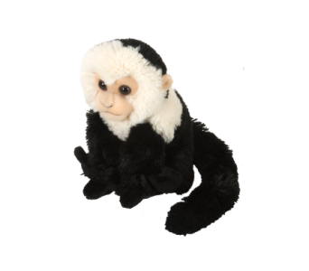 Capuchin Stuffed Animal - 8